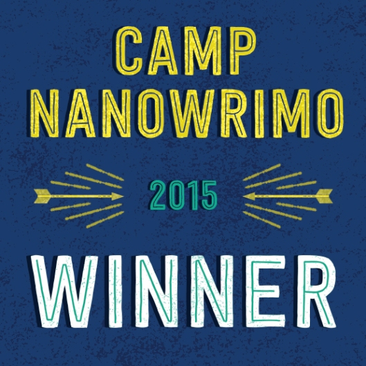 Camp-Winner-2015-Twitter-Profile